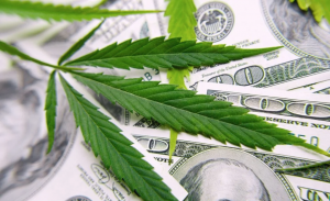 Cannabis-Based Businesses and Trademark Law